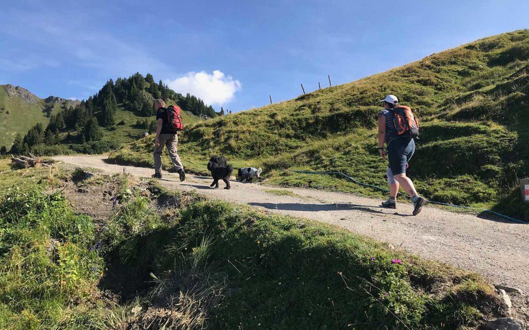 Gos-Wanderung in Bildern